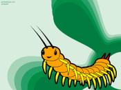 Centipede_800_5