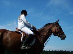 505112_girl_riding_horse_2