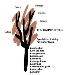 Tr_tree